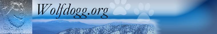 Visit Wolfdogg.org